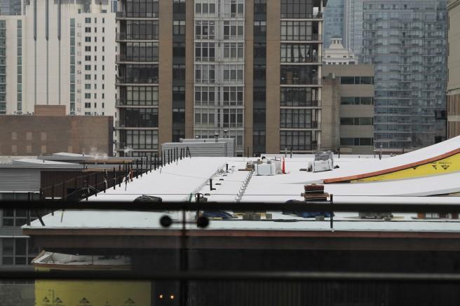 Wintrust Arena roof 4